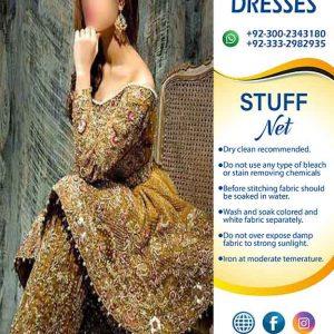 PAKISTANI BRIDAL DRESSES 2019 (2)